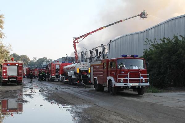 Wieści pożar hali