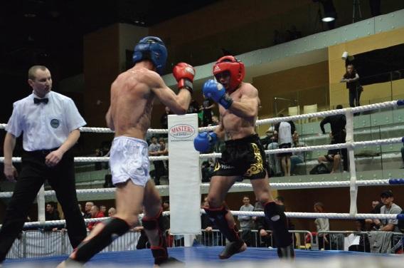 Wieści kickboxing
