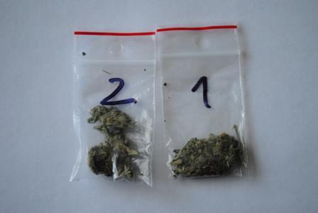 Wieści marihuana