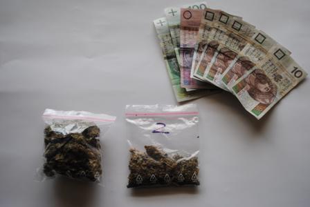 Wieści Piotrków uprawiał marihuanę