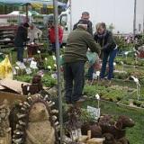 Wieści targi ogrodnicze