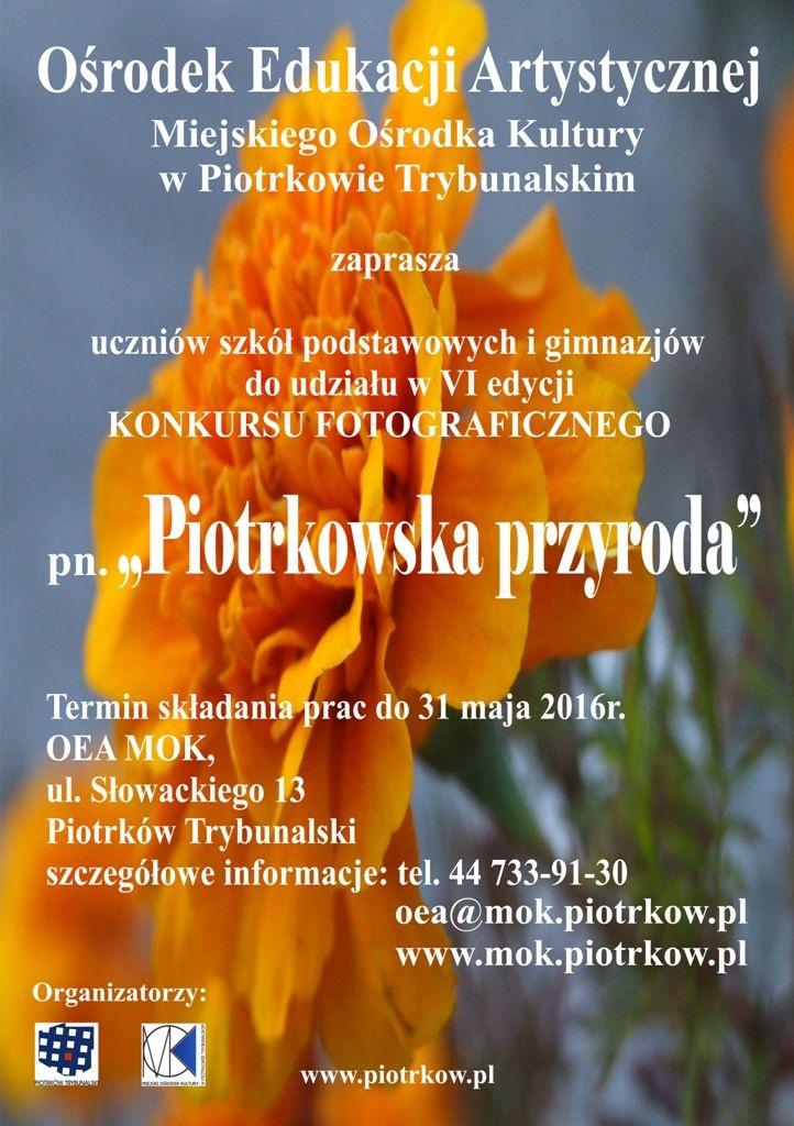 Piotrkowska przyroda VI A3 - mini